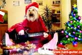 We Wish You A Merry Christmas – Dog Playing Guitar