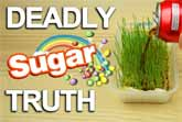 What Sugar Really Does To Your Body